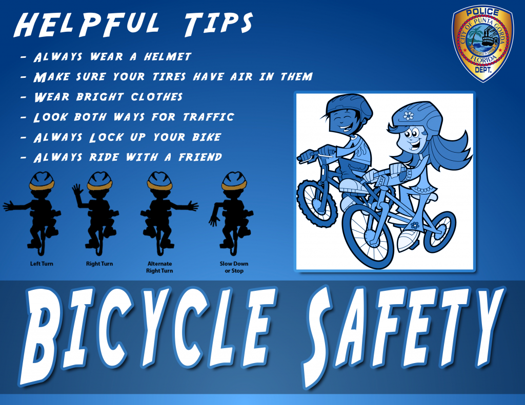 Bike-Safety-Liner
